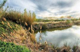 Rutes per Catalunya, Rutes a peu i en bici per l'Horta de Lleida