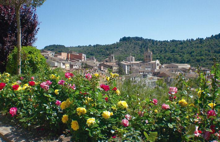 Racons per Catalunya, Vallbona