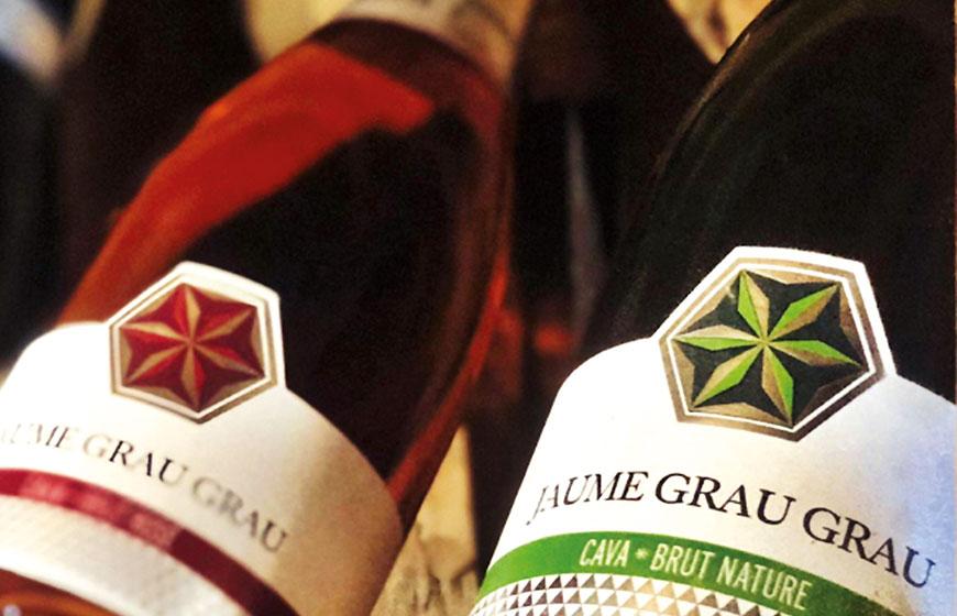grapes-2180685_1920-760x541