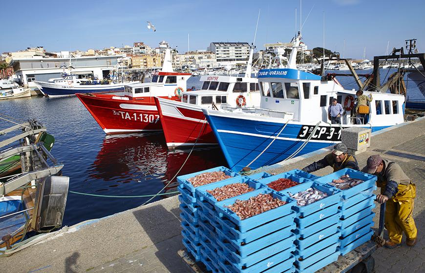 Pesca-Palamós