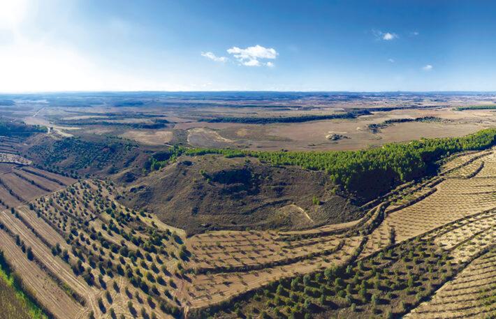 Rutes per Catalunya Piug Verd de Lleida
