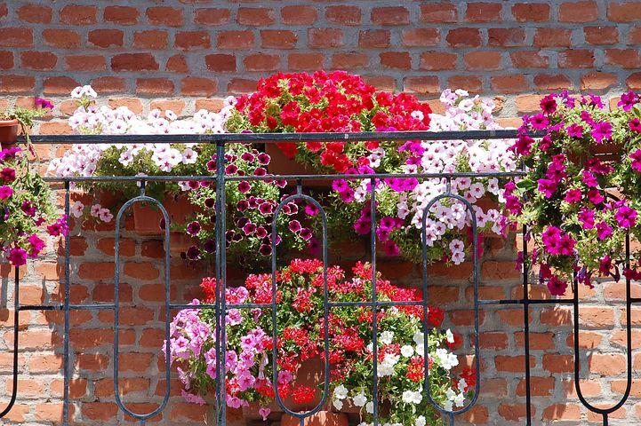 Arenys Flors